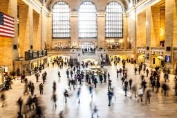 Market Economy vs Social Economy